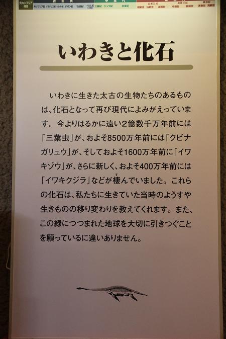 画像2013.05.01 035.JPG