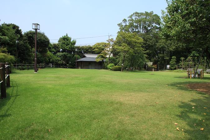 画像2013.05.01 069.JPG