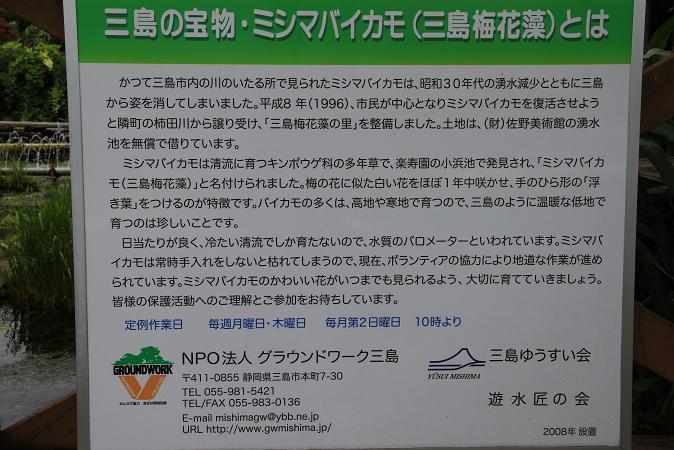 画像2013.05.01 128.JPG