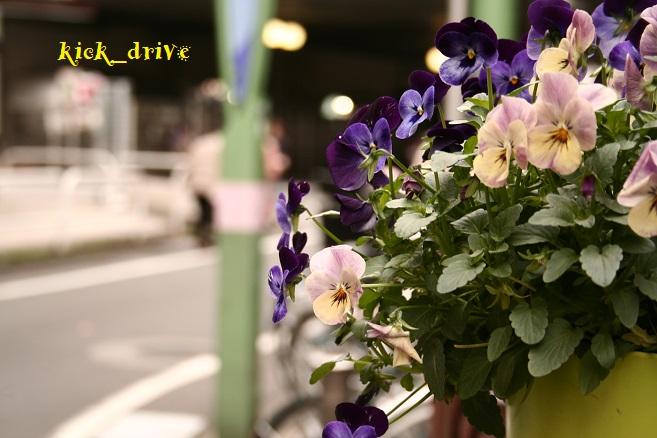 _MG_0002.jpg