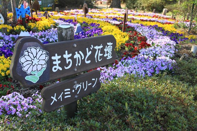 画像2012.04.27 007.JPG