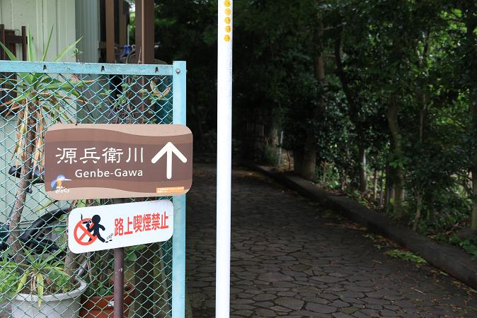画像2013.05.01 067.JPG