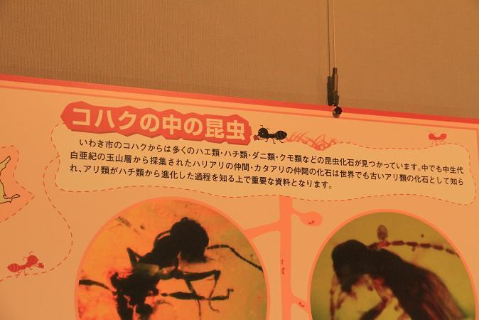 画像2013.05.01 080.JPG