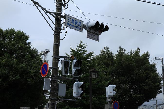 画像2013.05.01 178.JPG